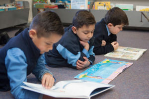 St Josephs Catholic Primary School Belmore - students reading books in the library